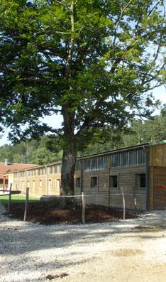 centre equestre Reculotte